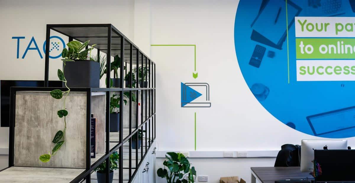 rent office plants