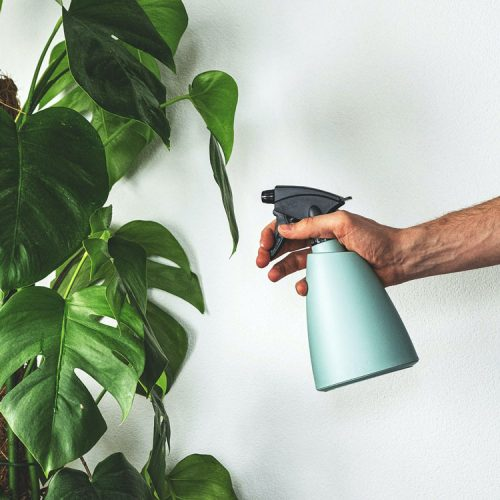 plant care tools water mister